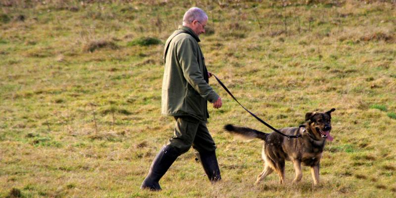 Jäger – Tierbeobachter aus Leidenschaft