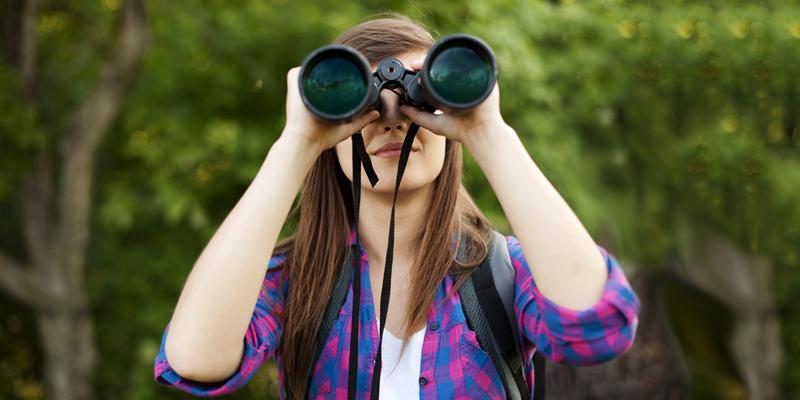 Ferngläser für die Vogelbeobachtung – Vergrößerung