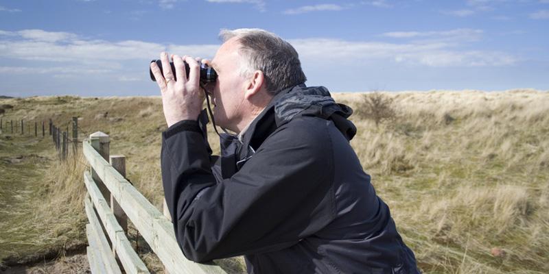 Ferngläser für die Vogelbeobachtung – Zusammenfassung