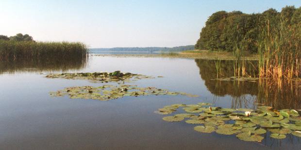 Der Nationalpark Müritz