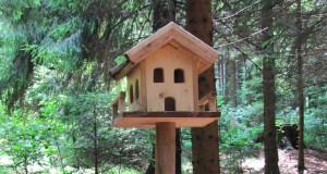 Anleitung: Vogelhaus selber bauen
