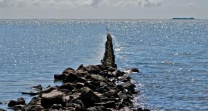 Die Hallig Norderoog –  Eine Arche für Küstenvögel