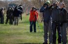 Birdrace und Co. – Wettbewerbe für Vogelbeobachtung weltweit