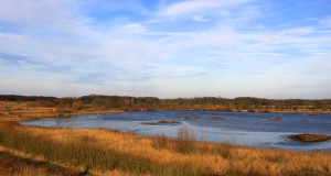 Rieselfelder Münster – Europäisches Vogelreservat in Westfalen