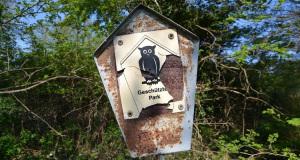 Fünf wichtige Gesetze zu Wildvögeln und Naturschutz