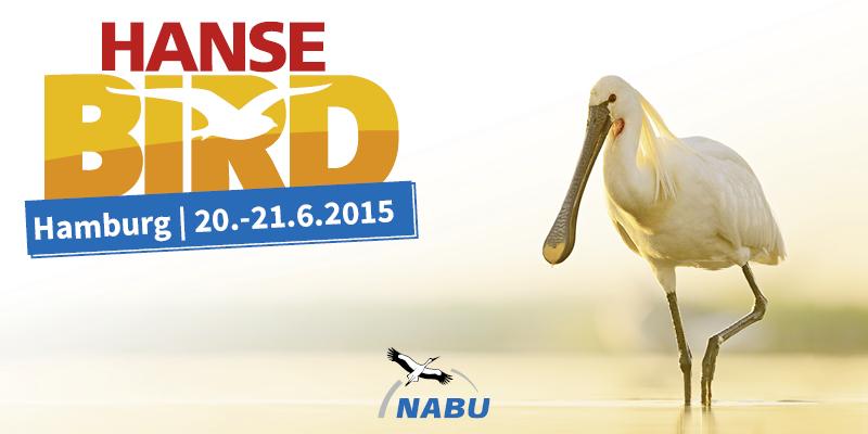 HanseBird 2015 – Vogelbeobachter-Treff im hohen Norden