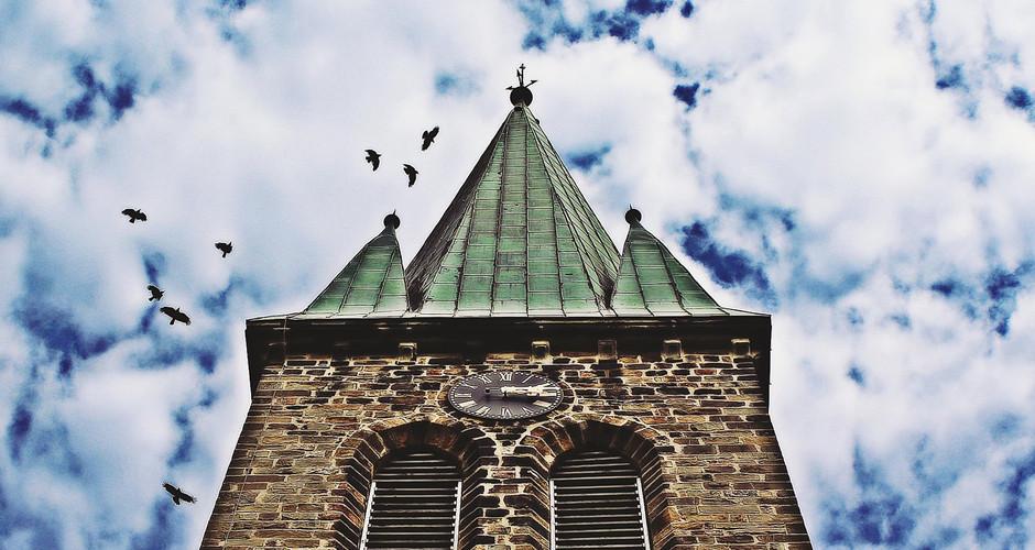 Der Kirchturm – schützenswerter Lebensraum
