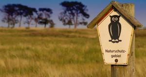 Vogelschutzprojekte in Deutschland