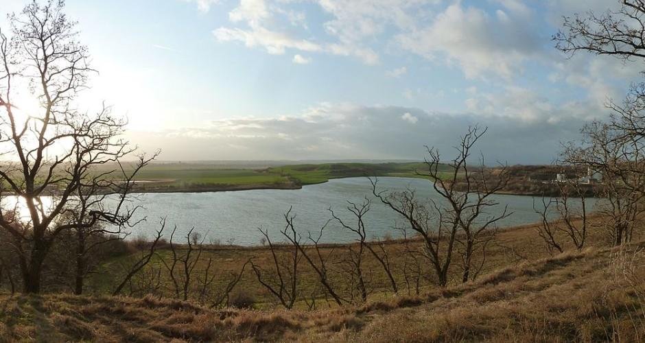 Der Salzige See in Sachsen-Anhalt – Vogelparadies im Seebecken