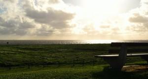 Die Hamburger Hallig – Natur und Isolation am Wattenmeer