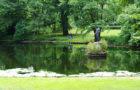 Der Große Tiergarten und seine geheimen Bewohner