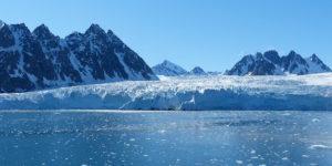 Spitzbergen: Vögel am Nordpolarkreis