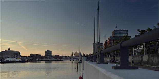 Vogelbeobachtung in Kiel