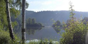 Ein Besuch im Naturschutzgebiet Fuldaaue