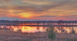 Das Bourtanger Moor – Mosaik der Lebensräume