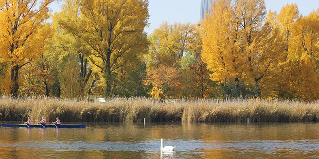 Abseits vom Wurstelprater –<br/> Vogelbeobachtung in Wien