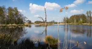 Ein Tag an den Krickenberger Seen