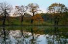 Das Biosphärenreservat Mittelelbe – Lebensraum Fluss