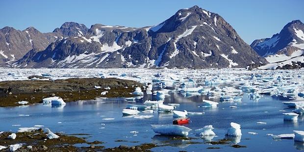 Grönland und seine Vogelwelt