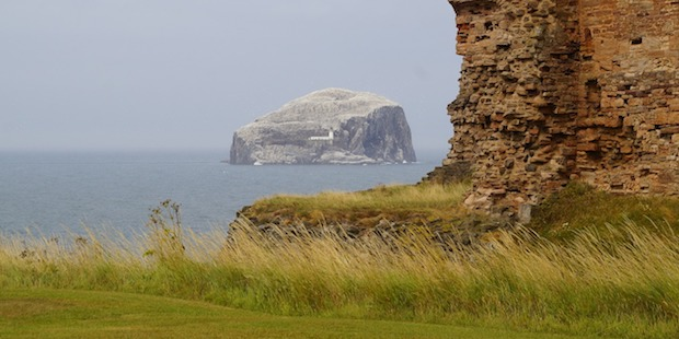 Vogelbeobachtung in Schottland: Bass Rock und Isle of May