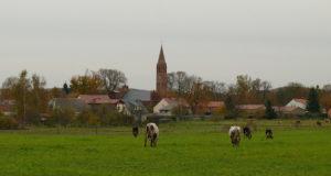 Das Ökodorf Brodowin in Brandenburg