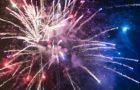 Feuerwerke und Vögel – Ein Spektakel wird zum Schrecken