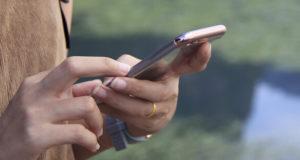 """Nützliches Tool: Die NABU-App """"Vogelwelt"""""""