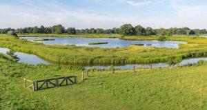 Das Steinhorster Becken in Nordrhein-Westfalen