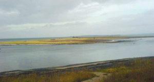 Langenwerder: Kleines Eiland, große Vogelwelt