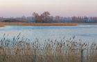Der Neolith-Teich in Sachsen-Anhalt