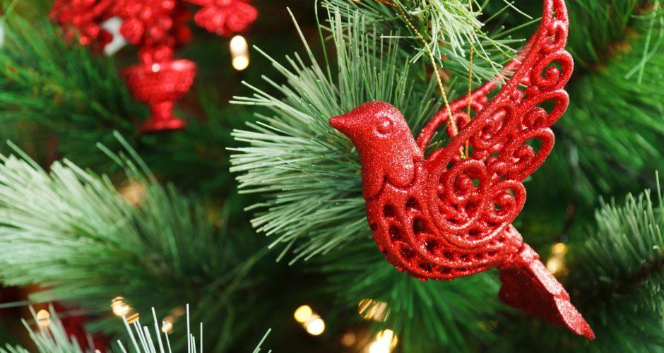 Weihnachtliche Geschenkideen für Vogelfreunde