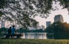 Ideen aus aller Welt für vogelfreundliche Städte